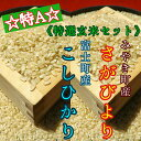 【ふるさと納税】特A『特選玄米20kg』食べ比べセット 【さがびより10kg・コシヒカリ10kg】≪産地限定≫
