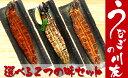 【ふるさと納税】うなぎの川友 うなぎを選べる2つの味セット(...
