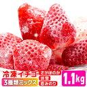 【ふるさと納税】KN001R 冷凍イチゴ[こおりいちご]1....