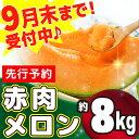 【ふるさと納税】ZP101R 【訳あり】赤肉メロン 約8kg...