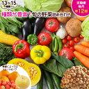【ふるさと納税】旬の野菜詰め合わせ定期便(年12回コース)