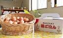 【ふるさと納税】0413.小玉さんち(産地)の卵 朝ごはん