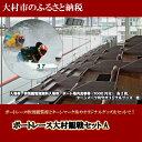 【ふるさと納税】4001.ボートレース大村観戦セットA