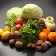 【ふるさと納税】季節の野菜詰め合わせ