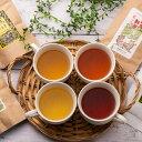 【ふるさと納税】A-169 対馬紅茶(Cセット)
