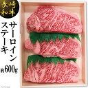 【ふるさと納税】長崎和牛 サーロインステーキ(約600g)
