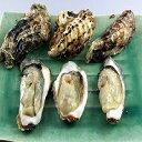 34【ふるさと納税】長崎県大村湾産 殻つき牡蠣5kg