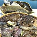 64【ふるさと納税】 漁協直送!大村湾からの贈り物(季節の魚...