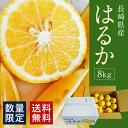 【ふるさと納税】長崎県産はるか 8kg 柑橘 蜜柑 ミカン ...