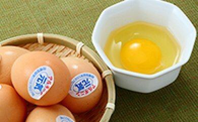 【ふるさと納税】EA01【食で健康に!】アルギニン元気たまご