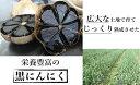 【ふるさと納税】NA22 【フルーティーな香り♪蜂蜜以上の甘さに驚き!】栄養満天!長崎県産 黒にんにく...