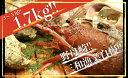 【ふるさと納税】JB01 伊勢海老!! 1.7kg 3尾から...