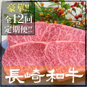 【ふるさと納税】NA36 【A5等級ヒレなど】総計36.27kg 全12回プレミアム定期便 長崎和牛食べ尽くしセット【肉のあいかわ】