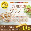 【ふるさと納税】九州大麦グラノーラ 合計48袋 (プレーン ...