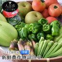 【ふるさと納税】ひとよし球磨産 新鮮農作物詰合せ 7〜12品...