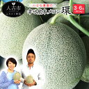 【ふるさと納税】小さな農園の幸せ熊本メロン『環』 たまき 3...