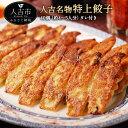 【ふるさと納税】松龍軒の楽焼き冷凍餃子 お試しサイ