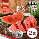 【ふるさと納税】小玉スイカ(2玉) 赤色 熊本県 玉名産 すいか 果物 フルーツ 薄皮で甘い