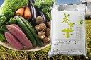 【ふるさと納税】D-26 養生米と野菜収穫便