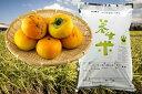【ふるさと納税】D-27秋の収穫便 養生米新米と富有柿 [D...