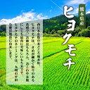 新感覚!みかんチップス(熊本県産)25gX6袋(送料込)