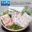 【ふるさと納税】天草大王 鍋セット 地鶏 鶏肉 セット 熊本...