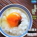 【ふるさと納税】天草あおさ醤油150ml×5本 アオサ 青のり 卵かけ しょうゆ 熊本県産 九州 送料無料