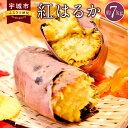 【ふるさと納税】熊本県産 紅はるか 約7kg 芋 さつまいも...
