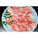 【ふるさと納税】熊本県産 梅肉ポーク 500g