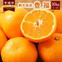 【ふるさと納税】数量限定 熊本県産 豊福 10kg(L〜2L...