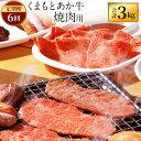 【ふるさと納税】【定期便 6回】 くまもとあか牛 焼肉用 合...