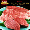 【ふるさと納税】 数量限定 熊本県産あか牛サーロインステーキ...