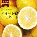 【ふるさと納税】食べるレモン スイートレモネード 約3kg 九州産 熊本県産 レモン フルーツ 果物...