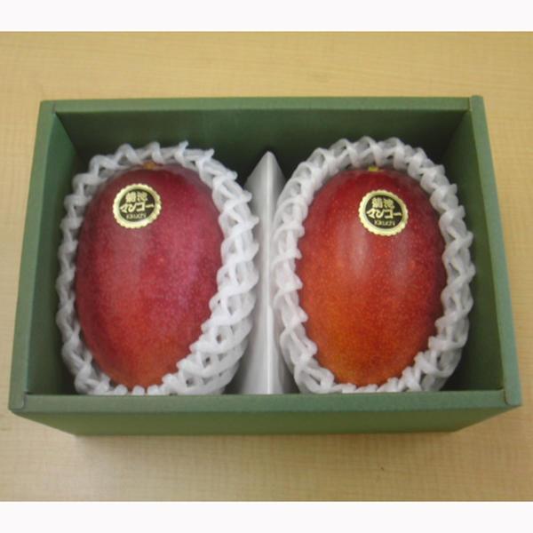 【ふるさと納税】弁天マンゴー 1K