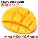 【ふるさと納税】とろけるように甘い秀品完熟マンゴー 5〜6玉...