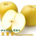 【ふるさと納税】ゆみちゃん農園の玉東梨 約3kg(3〜10玉...