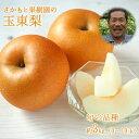 【ふるさと納税】さかもと果樹園の玉東梨 約3kg (3玉-1...