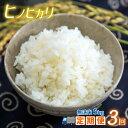 【ふるさと納税】定期便【3回】日本遺産菊池川流域の米 ひのひかり5kg(無洗米)<11月より順次発送スタート>