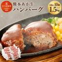 【ふるさと納税】熊本県産 あか牛 ハンバーグ 10個 合計1...