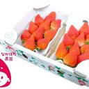 【ふるさと納税】なかはた農園のイチゴ(280g)×2パック 【果物類・いちご】 お届け:2020年12月~2021年5月初旬