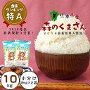 【ふるさと納税】熊本県産 森のくまさん 10kg