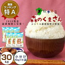 【ふるさと納税】熊本県産 森のくまさん 30kg