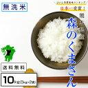 【ふるさと納税】森のくまさん 無洗米 10kg