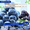 【ふるさと納税】熊本産冷凍ブルーベリー1kg