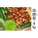 【ふるさと納税】賀久農園の球磨栗 約4kg 【果物類・くり・