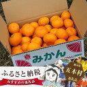 【ふるさと納税 果物】No.078 熊本産フルーツ☆みかん南柑20号
