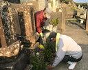 【ふるさと納税】No.086 墓地管理代行サービス / お墓 除草 清掃 熊本県