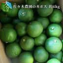 【ふるさと納税】佐々木農園のカボス 約4kg C09008【大分県大分市】