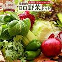 【ふるさと納税】 【定期便1年コース】 季節の日田野菜セット...