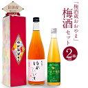 【ふるさと納税】梅酒蔵おおやま 梅酒セット(熟成梅酒ゆめひび...